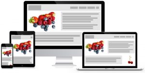 Portland Oregon Web Design Services