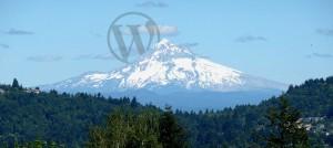 Protocol Three - Portland Wodrpress Businses Website Design